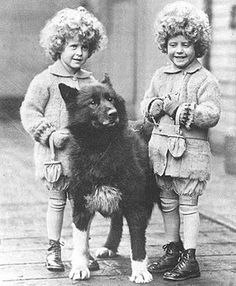 Real Balto and Togo.basic fact files : The true story Vintage Dog, Vintage Children, Celebrity Dogs, Photos With Dog, Famous Dogs, Dog Years, Mans Best Friend, Old Pictures, Vintage Photos
