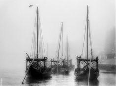 Barcos Rabelos ..... Sailing Ships, Poet, Boats, Lost, Writers, Sailboat, Tall Ships