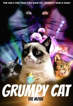 A celebucat movie I'd like to see! Grumpy Dwarf, Grumpy Cat, Princess Monster Truck, Meme Caption, World Domination, Stuff And Thangs, Good Ol, Cat Life, Cat Memes