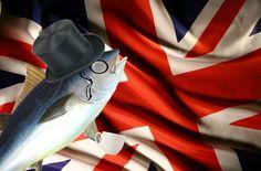 Aristocrat English Tuna