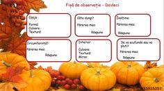 Astăzi vă povestesc despre o activitate distractivă, de sezon, prin care invățăm să facem observare structurată. Pumpkin, Vegetables, Food, Buttercup Squash, Meal, Pumpkins, Essen, Vegetable Recipes, Hoods
