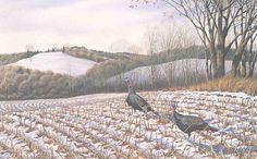 Winter_Fields.jpg (1338×832)
