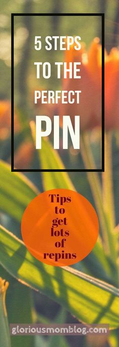 5 steps to the perfect pin: tips to get more repins. Check it out at gloriousmomblog.com.