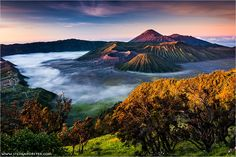 Bromo Indonesia/This Morning was just EPIC. Everything was perfect. I was waiting at this point for over 5 hours until the sun came up. You can see the Volcano Bromo and Semeru in the first light of the day.  www.stefanforster.com