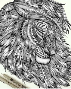 Proud Lion Drawing by Faye Halliday