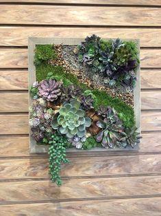 Succulent Wall Planter, Succulent Frame, Vertical Succulent Gardens, Vertical Garden Wall, Garden Wall Art, Succulent Arrangements, Floral Arrangement, Artificial Succulents, Cacti And Succulents