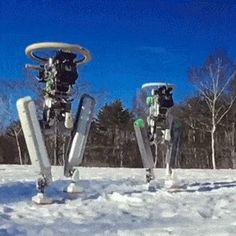 robotic network
