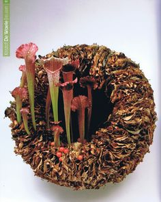 International Floral Art 2
