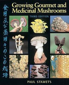 Best tutorial on growing mushrooms