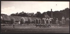 Cadinen: Kaiser Wilhelm II raised Trakhener horses on his manor, which he outfitted with commodious equestrian facilities. Jeff