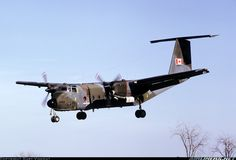 Brampton was a grass strip and Buffalo's wore tactical camouflage when this shot was taken. - Photo taken at Brampton in Ontario, Canada on September C130 Hercules, Sr 22, Cessna 172, Photo Search, Military Aircraft, Great Photos, Marines, Wwii, Buffalo