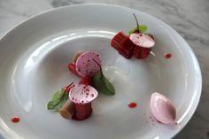Fine dining - raspberry jelly and sorbet, rhubarb sorbet, raspberry  meringue