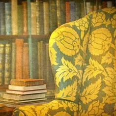 A Cozy Mystery Reading List
