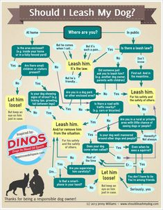 Check out the flowchart below by Jenny Williams of ShouldILeashMyDog.com inspired by Dogs In Need of Space (DINOS). @Cynthia Courtney