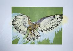 My Many Printed Owls - Kate Newman