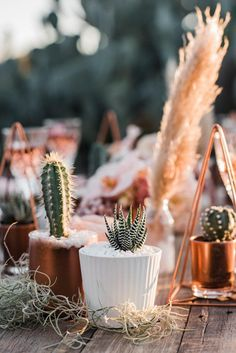 Wedding Invites Paper Boho desert wedding inspirations wedding centerpieces with cactus. Cactus Centerpiece, Succulent Wedding Centerpieces, Cactus Wedding, Boho Wedding, Floral Wedding, Wedding Flowers, Wedding Desert, Wedding Dress, Bohemian Weddings
