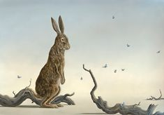 Robert Bissell - Contemporary fine art and prints Rainbow Warrior, Dream Catcher Native American, Rabbit Art, Bunny Art, Limited Edition Prints, Animal Paintings, Illustrations, Artist Art, Pet Birds