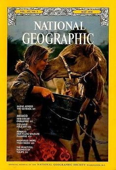 This is Robyn Davidson who in the late crossed the Australian Outback alone but for her dog, camels and an occasional companion out on walk-about. National Geographic May 1978 Robyn Davidson, National Geographic Society, Alone, Romain Gary, Angry Women, Thing 1, Aboriginal Culture, Mundo Animal, Australia Travel