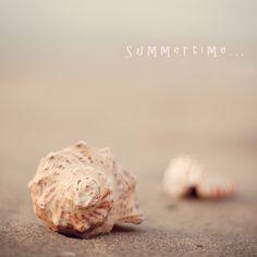 {summer}
