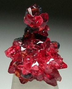 Rhodochrosite on manganite - N'Chwaning Mines, Kalahari, South Africa  mw