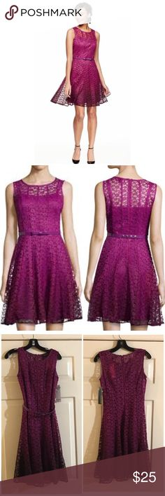 NWT Chetta B Ombré fit & flare lace dress Size 2. Chetta B from Neiman Marcus. Color is mulberry. Scoop neckline. Sleeveless. Hidden back zip. Belted waist. Fitted bodice with a-line pleated skirt. Polyester. NWT chetta b Dresses