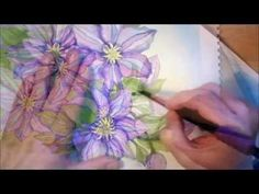"""Clematis"" watercolor painting Time Lapse"