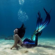 Little Mermaid Cove. 1 like · 3 talking about this. Love anything to do with mermaids? Browse our shop for everything mermaid from jewelry to. Mermaid Photo Shoot, Mermaid Pose, Mermaid Fairy, Mermaid Pictures, Fantasy Mermaids, Real Mermaids, Mermaids And Mermen, Realistic Mermaid Tails, Art Vampire