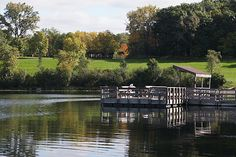 Blackwell Forest Preserve in DuPage county is a great place to do some outdoor bonding with your pup! #twobostons