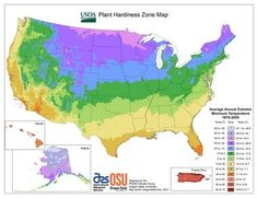 Did you realize that the USDA Zone Hardiness Map has been revised? Find your zone: Understanding Plant Hardiness Zones. Learning what plants are hardy in your area is one of the most important parts of gardening. Gardening Zones, Gardening Tips, Flower Gardening, Container Gardening, Garden Club, Lawn And Garden, Garden Gate, Plant Zones, Zone 7