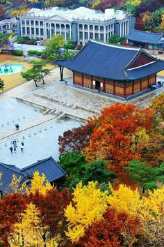 Autumn in Deoksugung,Seoul,South Korea