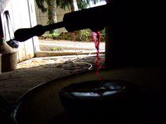 Passione di Vino
