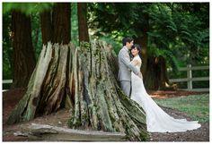 seattle wedding, destination wedding photographer, wedding details, DeLille Cellars, bride & groom