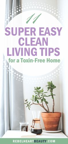 Super easy clean living tips to detox your home! Make the switch to non-toxic living for your health and wellness with these simple steps that make a big impact. Live your best, green lifestyle. Detox Your Home, Healthy Sweet Snacks, Green Living Tips, Natural Lifestyle, Healthy Lifestyle, Eco Friendly House, Clean Living, Green Cleaning, Natural Cleaning Products