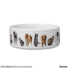 Cats & Dogs 猫の水皿