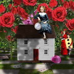 The Rose Garden by Jayne Alexander