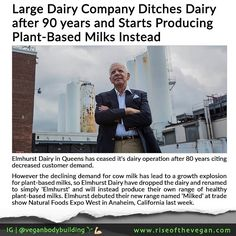 """Elmhurst Dairy in Queens has ceased it's dairy operation after 80 years citing decreased customer demand. _ CEO Henry Schwartz said the company has been operating at a high cost in recent years and revealed that Pasteurized fluid milk has sort of gone out of style. """"we are unable to continue to go on without ongoing losses."""" There isnt much room for our kind of business. I tried to keep this open because it was my fathers plant and he asked me to do so. _ The shutdown reflects ongoing trends…"""