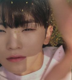 ―𝙟𝙞𝙝𝙤𝙤𝙣𝙚𝙮 ❏ bb looks heavenly omg woozi ily Dino Seventeen, Seventeen Memes, Seventeen Woozi, Seventeen Debut, Hip Hop, Jeonghan, Wonwoo, K Pop, Lgbt