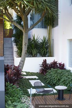 Seaside Dream Garden at Caringbah, Sydney, by Secret Gardens
