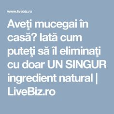 Aveţi mucegai în casă? Iată cum puteţi să îl eliminaţi cu doar UN SINGUR ingredient natural | LiveBiz.ro Good To Know, Diy And Crafts, Cleaning, Health, Pandora, Houses, Plant, Salud, Health Care