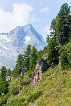 Zillertal Alpen