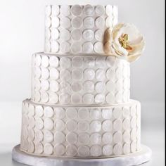 Wedding cake that reminds me off silver dollars