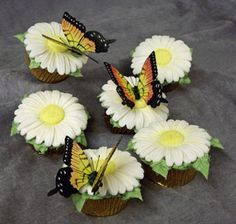 Butterfly Cupcakes!