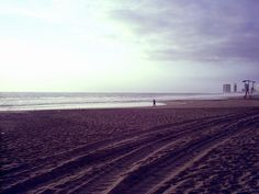 Playa Brava, Iquique - Chile.