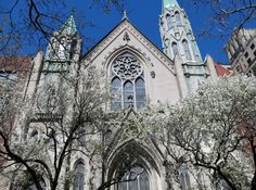 Spring Time finally! Manhattan Real Estate, New York City Photos, Spring Time, Barcelona Cathedral, Photo Galleries, Gallery, Building, Travel, Viajes