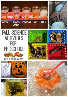 Fall Science Activit