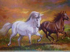 caballos salbaje