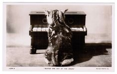 """Vintage CAT Postcard c1910s Antique RPPC Real Photo Cute KITTEN Playing Tiny Piano """"Seated One Day At The Organ"""" Rotary Photographic Series"""