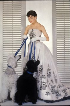 Audrey Hepburn with two standard poodles in Sabrina.