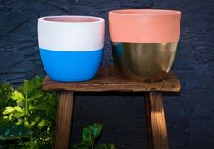 Online Sale of Artwork, Homewares, Furnishings, Cushions and Rugs which have been featured on The Block! Painted Pots, Online Sales, Deco, Potted Plants, Garden Pots, Flower Pots, Cushions, Diy Crafts, Rugs