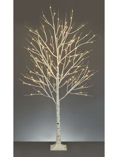 Buy your Linea 1.2 M Birch Tree online now at House of Fraser. Why not Buy and Collect in-store?